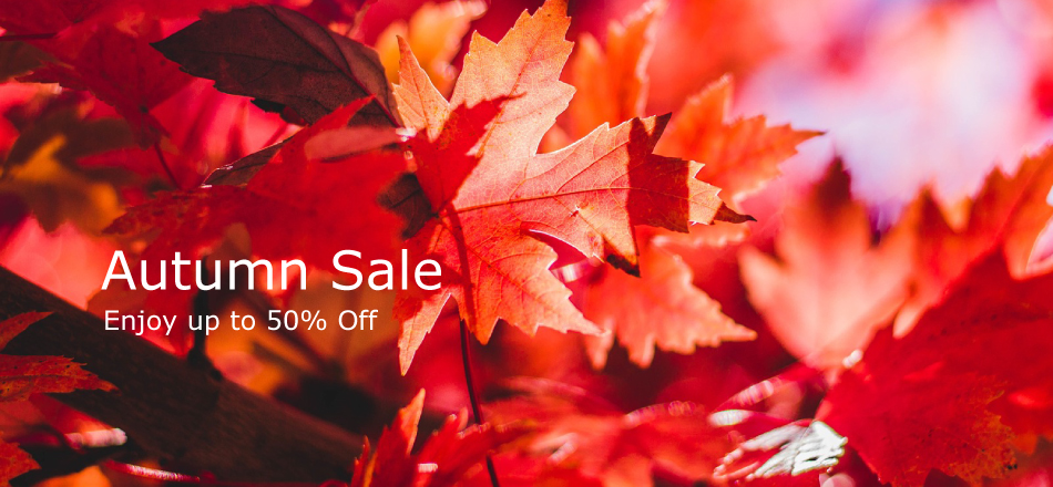 autumn_sale_home