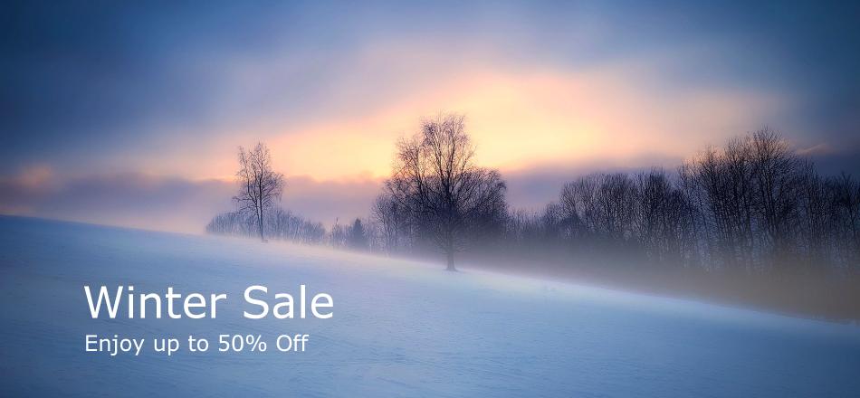 winter_sale_home